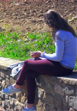 me vineyard